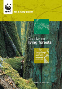 Deadwood, living forests