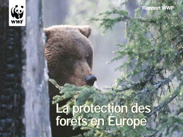 La protection des forêts en Europe